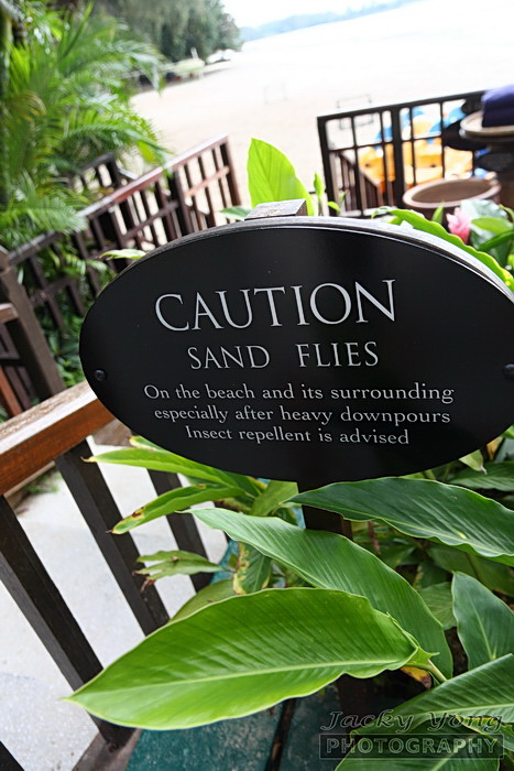 Beware of sand flies