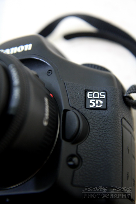 Canon EOS 5D with 50 1.8
